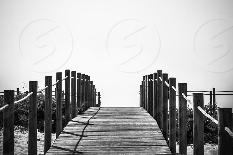 The path photo