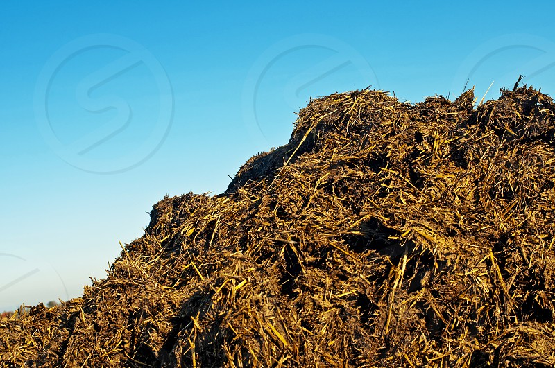 rural idyll dung heap with blue sky photo