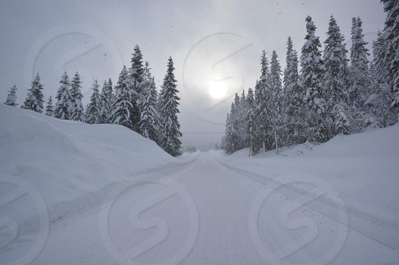 Winter wonderland in Norway - sunset -winter - snow photo
