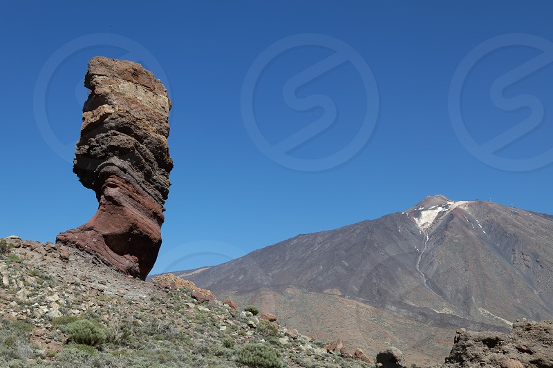Mount Teide and the Tree photo