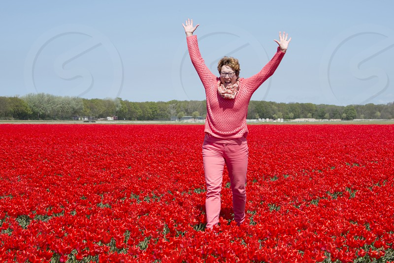 adult woman happy  in red tulip field in Holland near Lisse photo