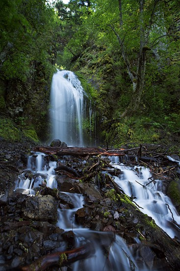 waterfall in between gray and green rocks and trees photo