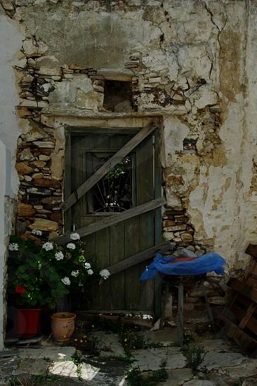 door wooden wall brick stone flower pot photo