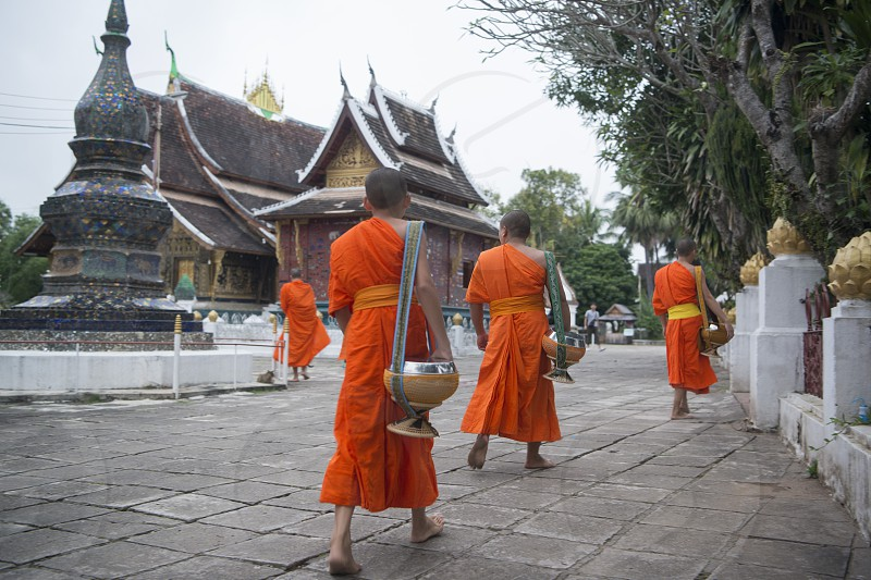 the wat xieng thong in the town of Luang Prabang in the north of Laos in Southeastasia. photo