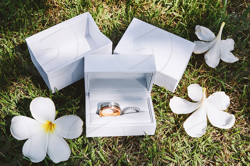 Wedding rings in white box on the grass shot taken during getting ready photo