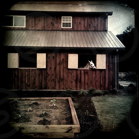 horse barn in north georgia / USA photo