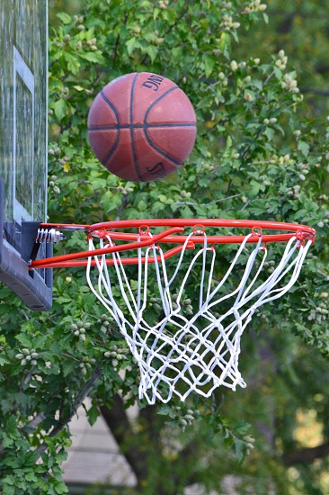 spalding basketball going in hoop photo