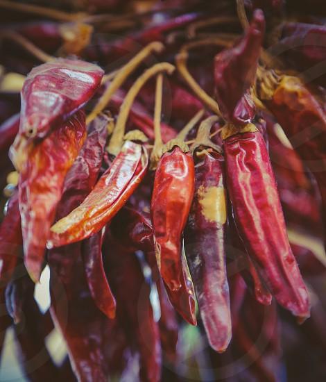 Dried red hot chilipepper photo
