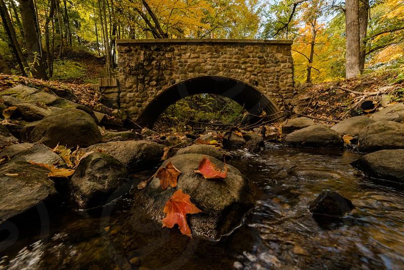 Stone Bridge In Fall photo