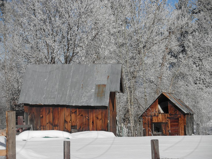 winter snow out buildings farm snow storm Idaho photo