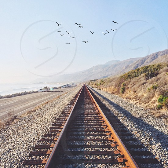 birds on the sky and railway view photo