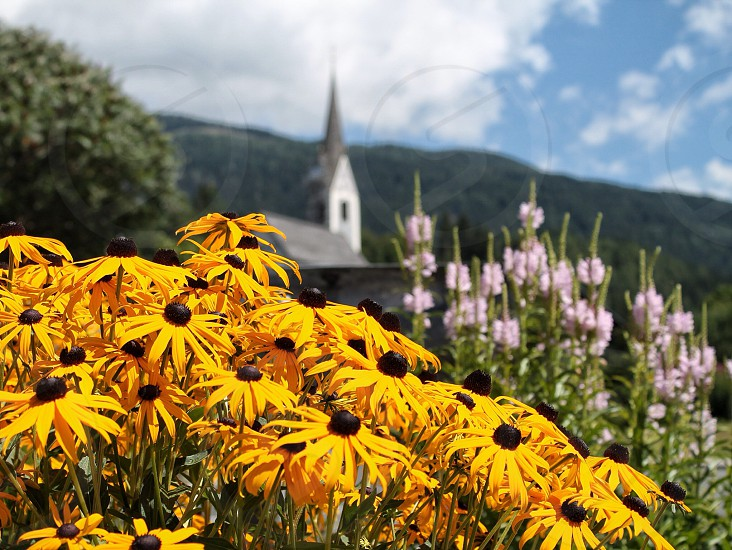 Flowers Spring summer church mountains Austria carinthia kärnten Yellow dephoffild Sky clouds nature mothernature  photo