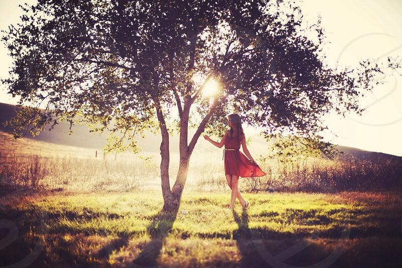 woman standing under tree photo