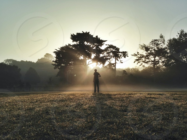 grassy field photo