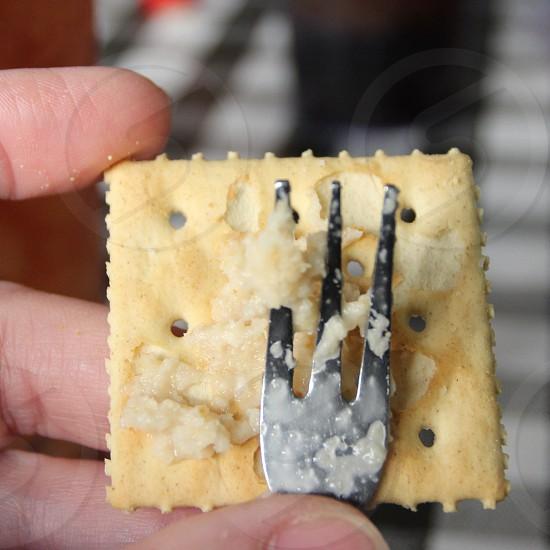 Three tined fork and horseradish on saltine cracker photo