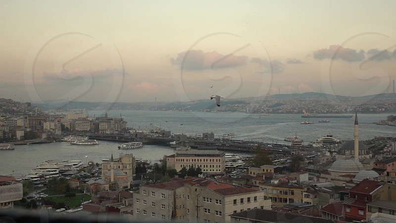 Panoramic view cityscape Istanbul Bosphorus strait Galata bridge with travel ships and boards and flying bird across. Slow motion Full HD video 240fps 1080p. photo