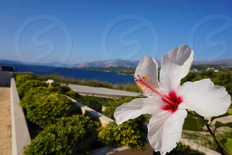 This photo is taken in Kefalonia greece.                photo