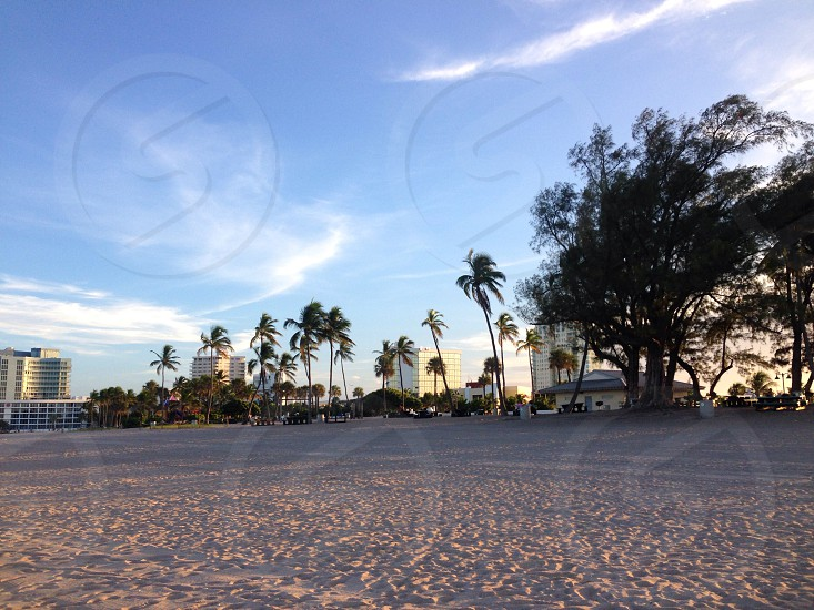 Ft. Lauderdale beach Florida photo