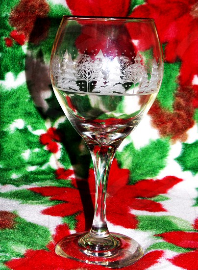 clear long stemmed glass with white trees print photo
