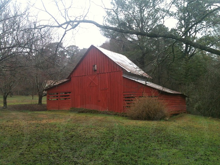 Red barn in the early morning photo