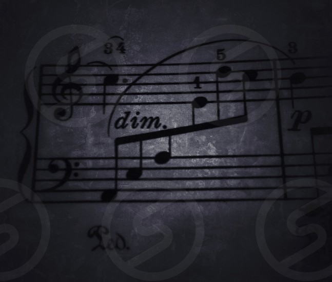 closeup photography of musical note printing paper photo