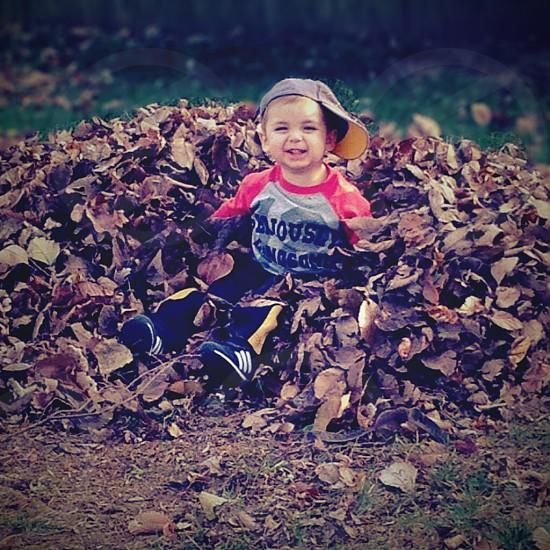 Fall fun photo