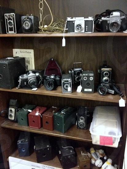 Old cameras for sale on shelf photo