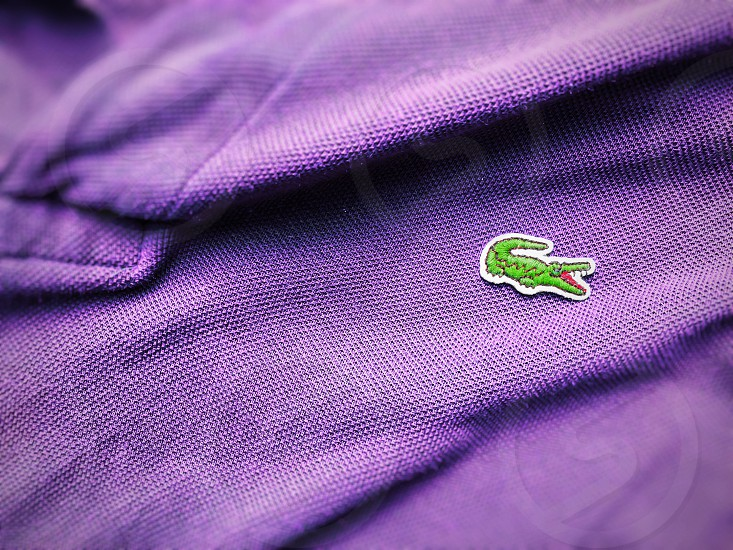 Rome Italy august 3rd 2018: close up view of a Lacoste purple polo shirt. Focus on the sewn crocodile photo