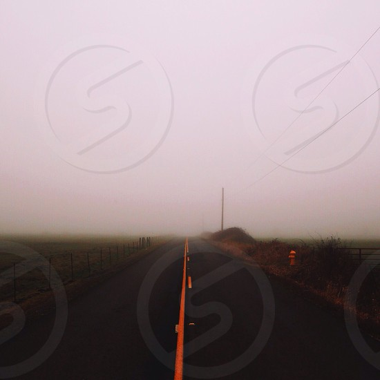 grey concrete road lined with brown and green grass during foggy weather photo