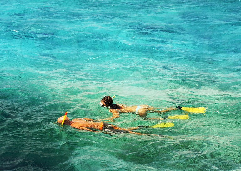Snorkeling. people sea ocean beach snorkeling  beauty  travel swim photo