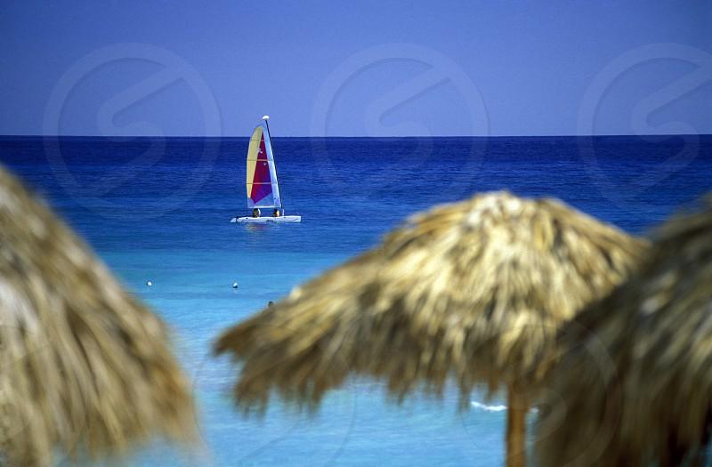 a Beach at the Village of  Bavaro in the Dominican Republic in the Caribbean Sea in Latin America. photo