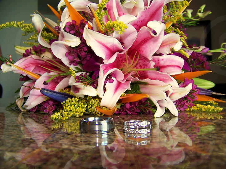 Tropical flowers and rings photo