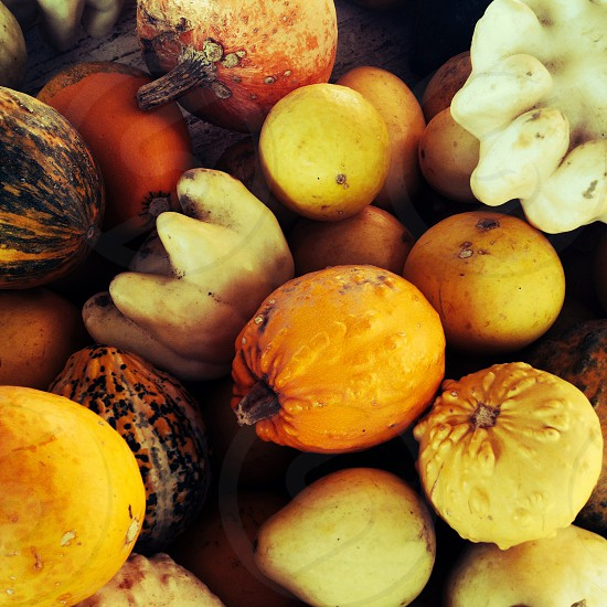 yellow red and white fruits and vegetables photo