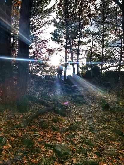 #hinterland #adventure #hiking #sunbeams #loveit #nature #outdoors photo