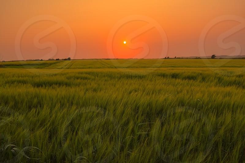 Orange sunset over the green field Kerry Ireland photo