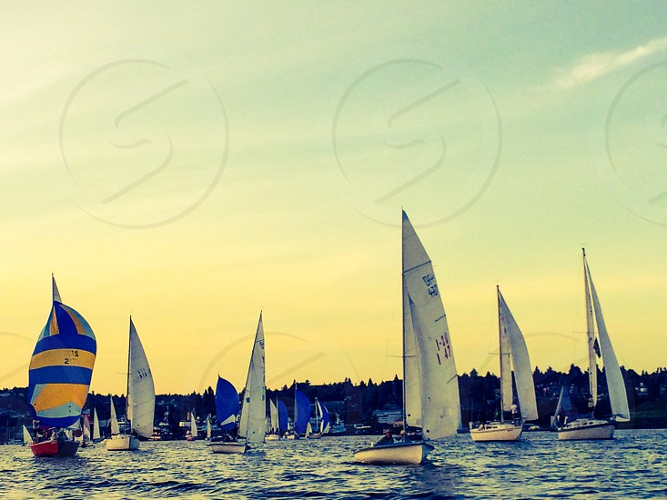 Sailing regatta lake union Seattle boats racing sails photo