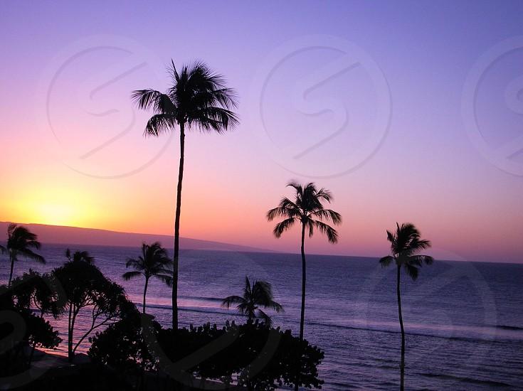 ocean night view photo