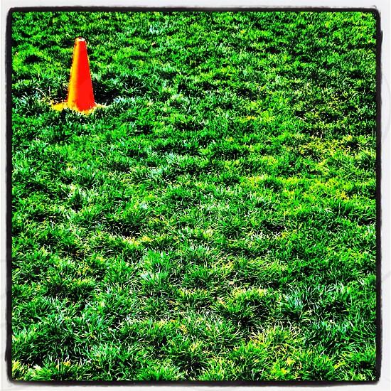 orange cone on grass field photo