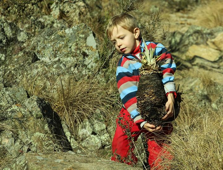 kid carring heavy plant photo