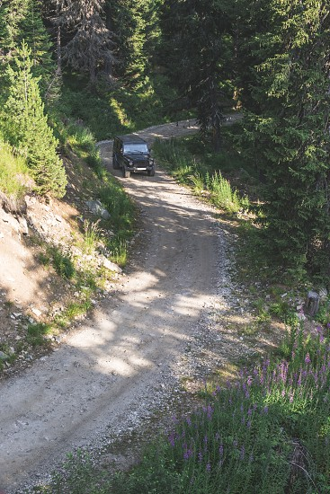 Black offroad car on a mountain road. Inside the green forest. photo