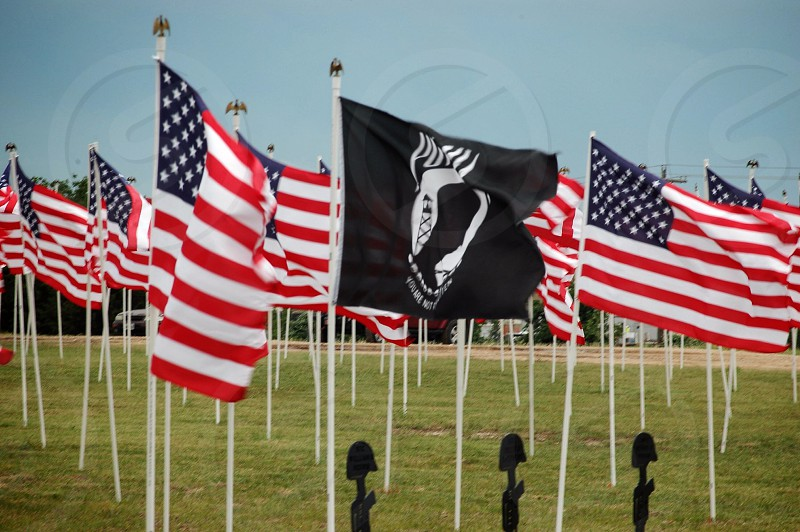 United States of America flag stand on green grass fields photo
