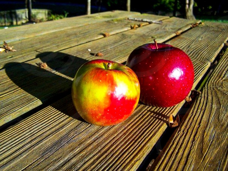 red and yellow apple fruit photo