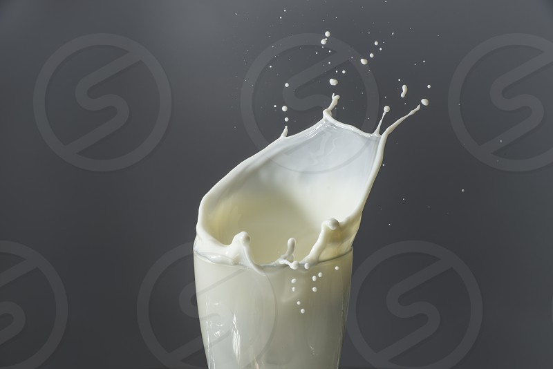 Splash of pure white milk in a glass photo
