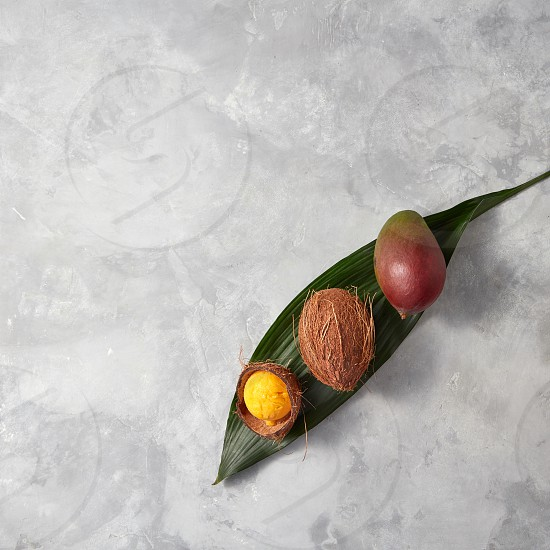 Fresh mango whole coconut and coconut shell with yellow ice cream on a palm leaf on a gray concrete background with scopies of space for text. Flat lay photo