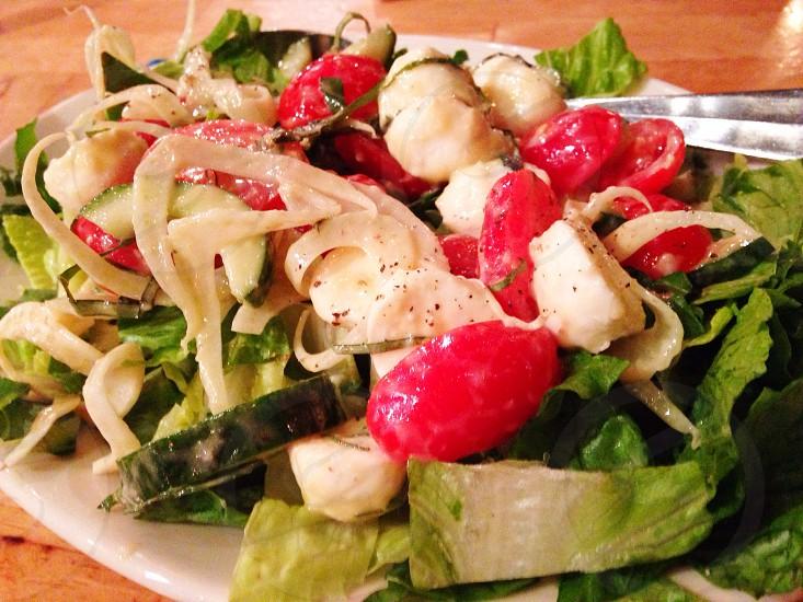 Tutta Bella Neapolitan Pizzeria Seattle. Salerno Insalata- mozzarella basil grape tomatoes fennel cucumber romaine lemon duh ion vinaigrette. photo