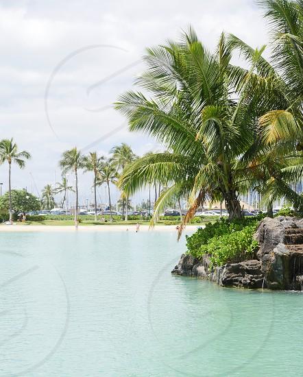 Waikiki beach Hawaii  photo