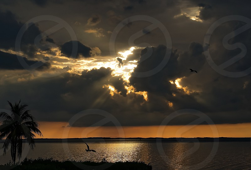 Sunsetting water Key Largo bay birds water landscape clouds scenic  photo
