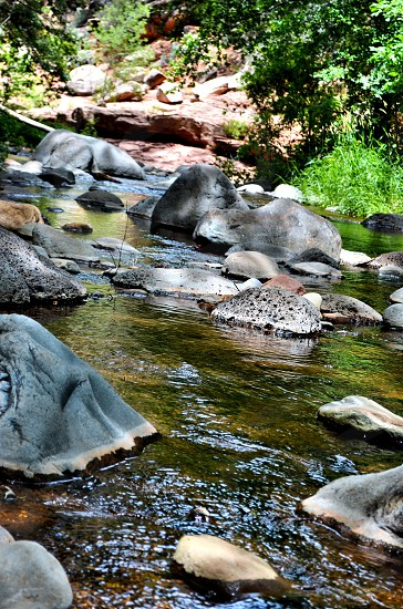 Forest creek water rocks nature  photo