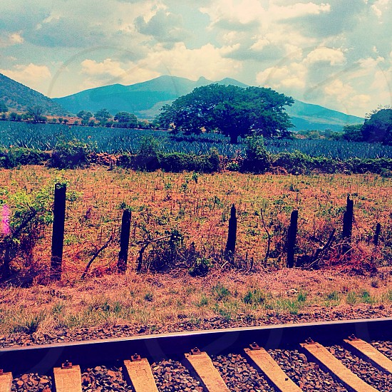 train rail with a view of grass field and mountains under blue sky photo