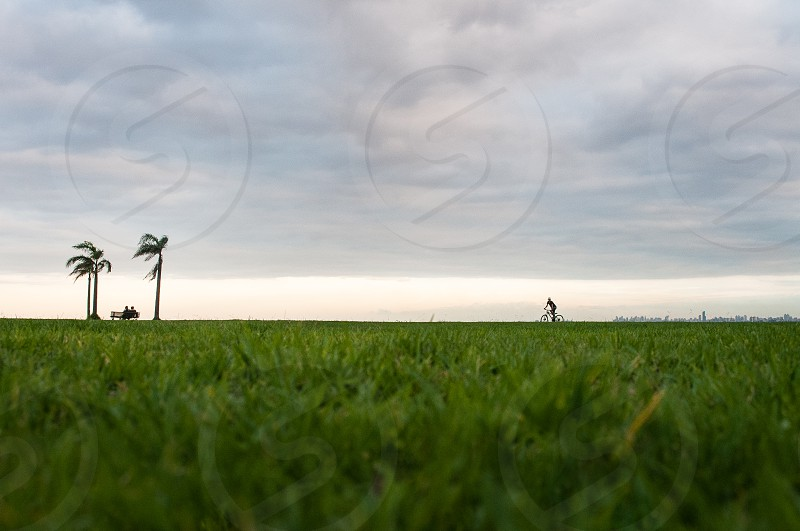 outdoor shot over green grass in the distance showing the grandness of nature versus tiny little people connected and inspired by nature photo